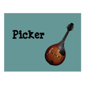 Mandolin Picker Postcard