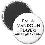 Mandolin Player Excuse