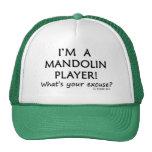Mandolin Player Excuse Cap