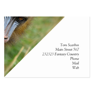 Mandrill Pack Of Chubby Business Cards