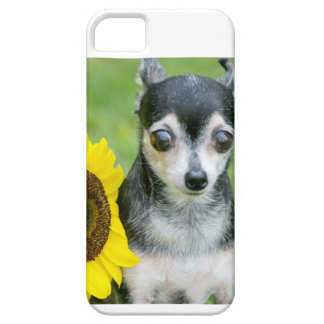 Mandy Barely There iPhone 5 Case