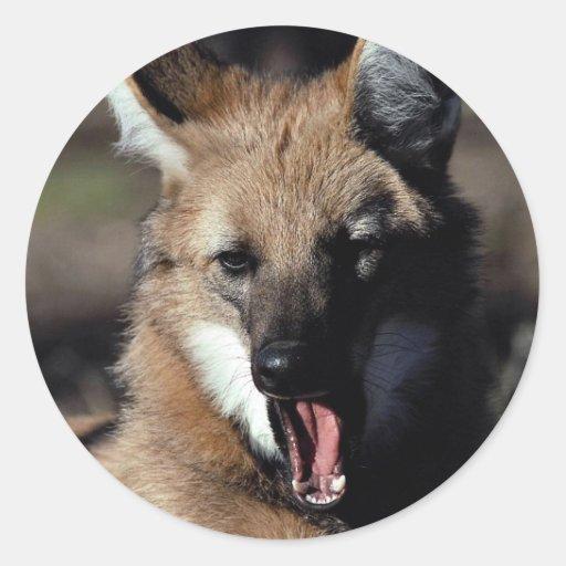 Maned wolf yawning stickers