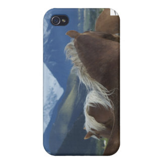 Manes & Mountains Cover For iPhone 4
