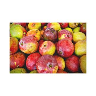 Mango ~ Caribbean Fruit ~ Canvas Art