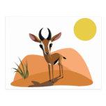 Mango the Gazelle Post Card