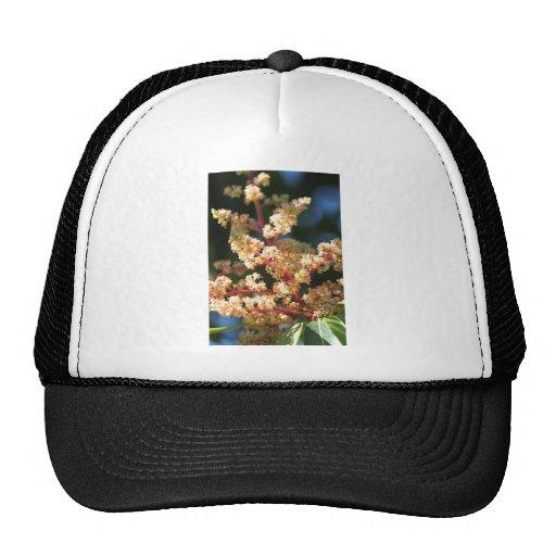 Mangoflowers Trucker Hat