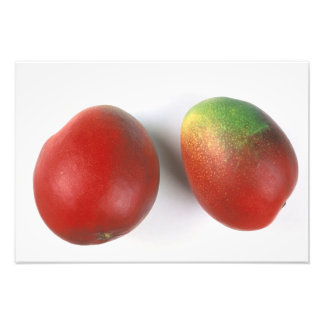 Mangos For use in USA only.) Photo Print