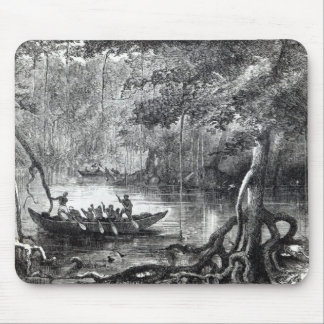 Mangrove Forest' Mouse Pad
