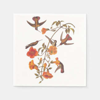 Mangrove Hummingbird with Orange Flowers Paper Serviettes
