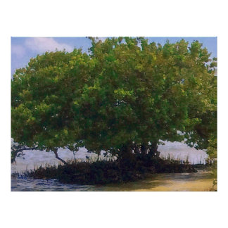 Mangrove on the Gulf Poster