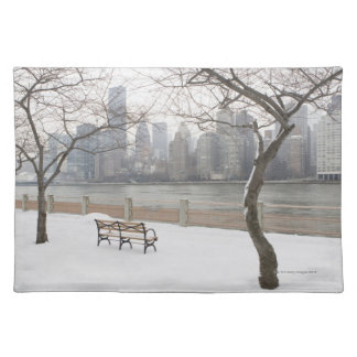 Manhattan in the Winter Placemat