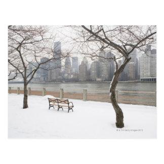 Manhattan in the Winter Postcard