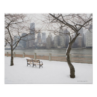 Manhattan in the Winter Poster