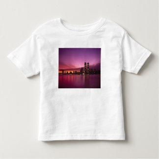 Manhattan Skyline and Hudson River, New York, Toddler T-Shirt