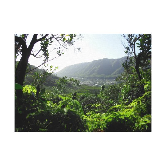 Manoa Valley, Hawaii Canvas Print