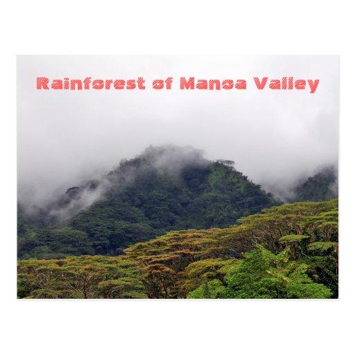 Manoa Valley Rainforest Postcard
