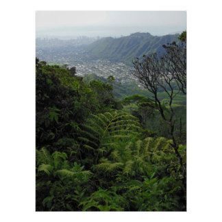 Manoa Valley to Waikiki Poster