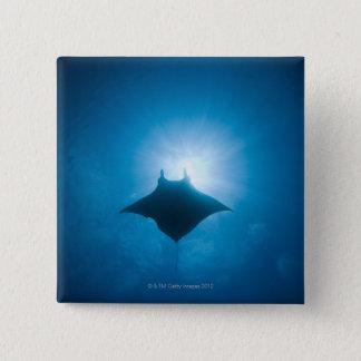 Manta swimming underwater 15 cm square badge