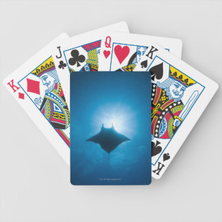 Manta swimming underwater bicycle playing cards