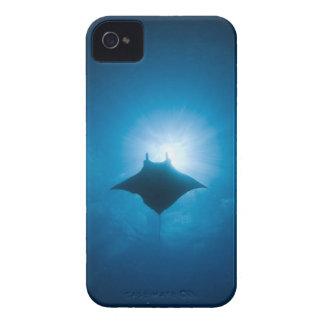 Manta swimming underwater iPhone 4 cover
