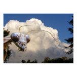Mantis and Cloud ~ ATC