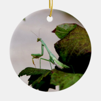 Mantis On A Hydrangea Christmas Ornament