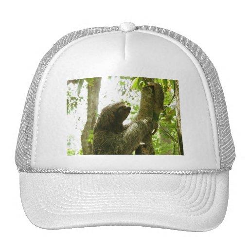 Manuel Antonio Mesh Hats