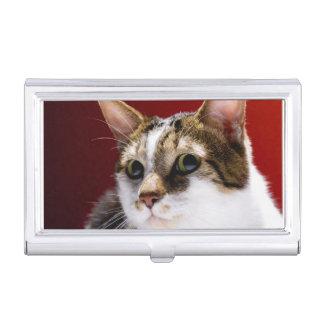 Manx cat business card holder