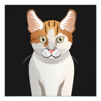Manx Cat Cartoon Paws Photo
