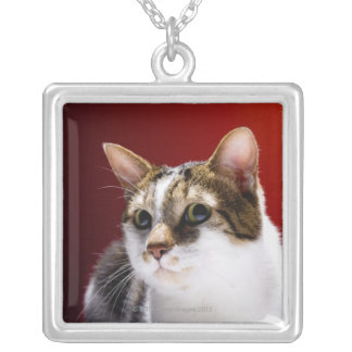 Manx cat silver plated necklace