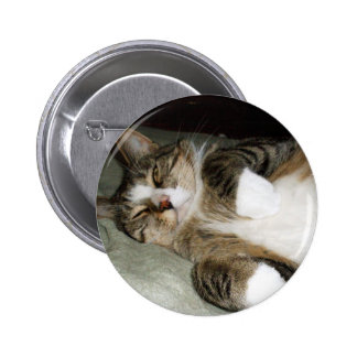 Manx Cat Sleeping Button Pinback Button