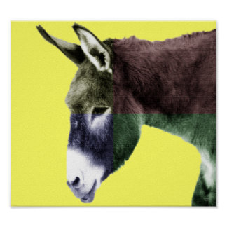Many Colors Burro Poster