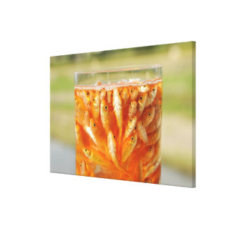 Many goldfish which are in the glass container canvas print