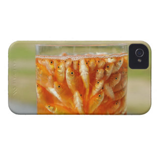 Many goldfish which are in the glass container iPhone 4 covers