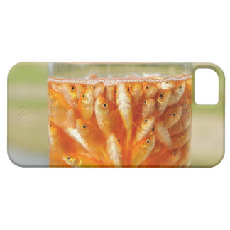 Many goldfish which are in the glass container iPhone 5 cover