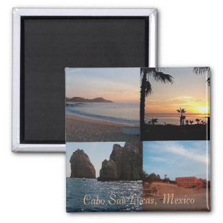 many scenes from cabo magnet