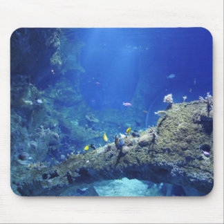 Many Sea Fishes Mouse Pad