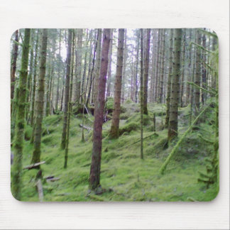 Many Tree Forest Mouse Pad