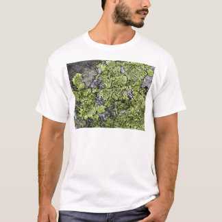Map Lichen T-Shirt