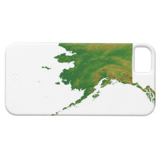 Map of Alaska 2 Barely There iPhone 5 Case