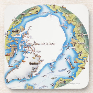 Map of Arctic Coaster
