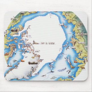 Map of Arctic Mouse Mat