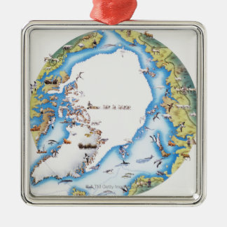 Map of Arctic Silver-Colored Square Decoration