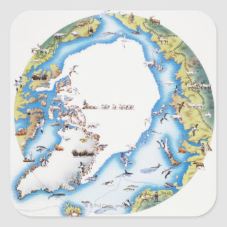 Map of Arctic Square Sticker