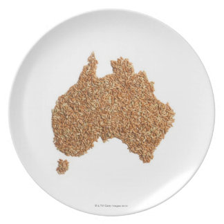 Map of Australia made of Glutinous Rice Plate