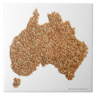 Map of Australia made of Glutinous Rice Tile