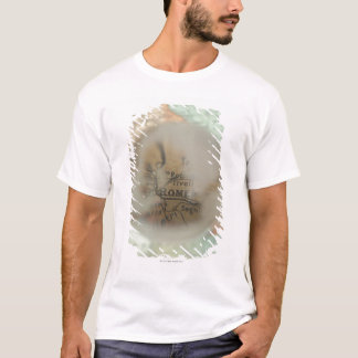 Map of Europe seen through crystal ball 2 T-Shirt