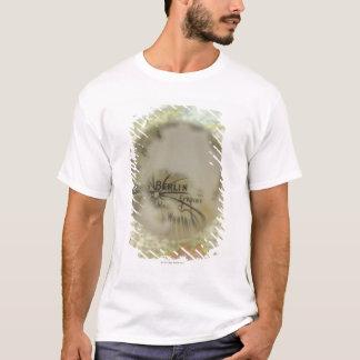 Map of Europe seen through crystal ball 3 T-Shirt