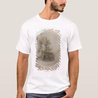 Map of Europe seen through crystal ball 5 T-Shirt