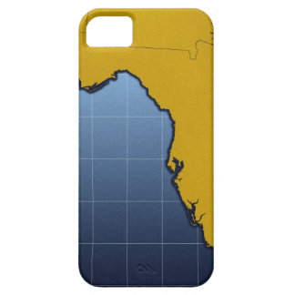 Map of Florida Barely There iPhone 5 Case